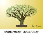 Bodhi  Sacred Fig  Tree Vector...