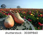 Wooden Shoes And Colorful...
