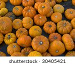 A background shot of small pumpkins. - stock photo
