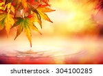 Autumn Spa Background With Red...