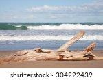 Driftwood Log On White Sandy...