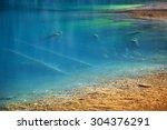 sunken trees in the kolsay lake ... | Shutterstock . vector #304376291