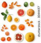 citrus series  citrus collection | Shutterstock . vector #3044457