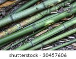 fine close up of green asian... | Shutterstock . vector #30457606