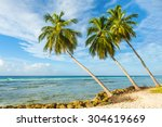 palms on the white beach and a... | Shutterstock . vector #304619669