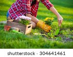 woman doing some gardening on a ... | Shutterstock . vector #304641461