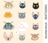 cat face set. kitty breed icon... | Shutterstock .eps vector #304732001