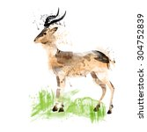 watercolor flamingos   Shutterstock .eps vector #304752839