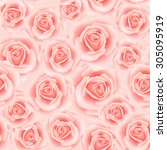 seamless pattern with rose... | Shutterstock . vector #305095919