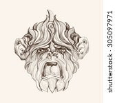 hand drawn portrait of monkey.... | Shutterstock .eps vector #305097971
