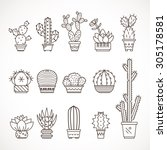 set vector geometric cacti  in ... | Shutterstock .eps vector #305178581