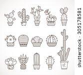 set vector geometric cacti  in ... | Shutterstock .eps vector #305178581