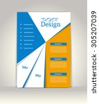 flyer  brochure or magazine...   Shutterstock .eps vector #305207039
