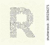 vector mono line style... | Shutterstock .eps vector #305236271