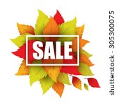 autumn typographic. fall leaf.... | Shutterstock .eps vector #305300075