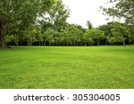 Garden  Backyard