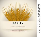barley icons on white... | Shutterstock .eps vector #305314379