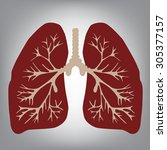 lungs of the person   Shutterstock . vector #305377157