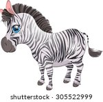 beautiful zebra is painted on a ... | Shutterstock .eps vector #305522999