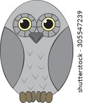 owl   cartoon   vector art