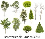 collection of tree   bush and... | Shutterstock . vector #305605781