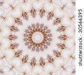 abstract design | Shutterstock . vector #30566395