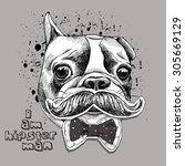 portrait of hipster french... | Shutterstock .eps vector #305669129