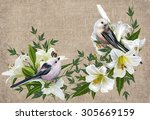 Two Small White Bird Sitting O...