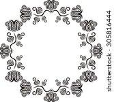 floral nature pattern frame... | Shutterstock .eps vector #305816444