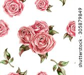 watercolor pink roses on white... | Shutterstock . vector #305879849