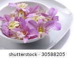 bowl of pink orchid | Shutterstock . vector #30588205