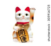 japanese lucky cat isolated on... | Shutterstock . vector #305916725