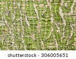 natural abstract background... | Shutterstock . vector #306005651