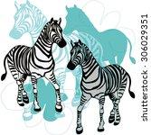 zebras running flowers striped... | Shutterstock .eps vector #306029351