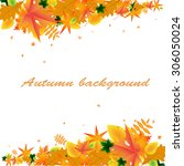 autumn background with frame of ... | Shutterstock .eps vector #306050024