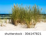 Landscape Of Sand Dune And...