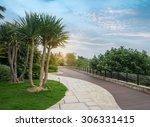 Walkway In A Beautiful Park...