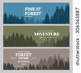 Pine Forest. Journey Banner...