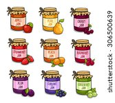 set of colored jars with... | Shutterstock .eps vector #306500639