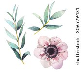 Watercolor Flowers Elements Se...