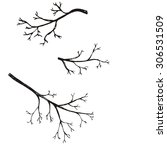 set of hand drawn branch.... | Shutterstock .eps vector #306531509