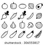 vector black and white... | Shutterstock .eps vector #306553817