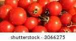 red ripe tomatoes | Shutterstock . vector #3066275