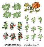 kitchen garden   cartoon  | Shutterstock .eps vector #306636674