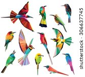 Stock vector birds set of colorful meropidae low poly designs isolated on white background 306637745