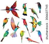 birds set of colorful meropidae ... | Shutterstock .eps vector #306637745