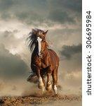 Wild Chestnut Draft Horse...