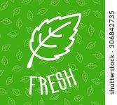 fresh green mint leaves...   Shutterstock .eps vector #306842735