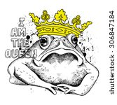 Image Frog  Toad  With A Yello...