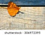 Autumn Leaf One Autumn Leaf...